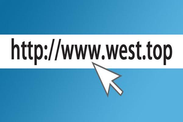 新顶级域名被域名注册管理机构审批