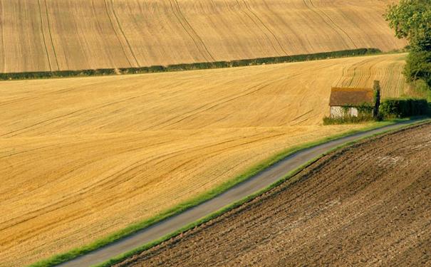 如何走向可持续现代农业发展道路?