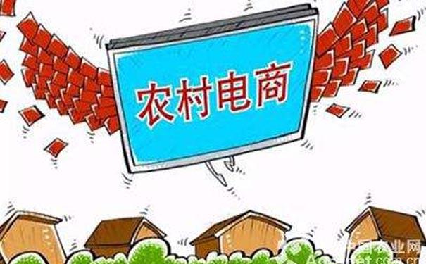 让土特产乘上消费升级的东风 农村电商已是发展重点