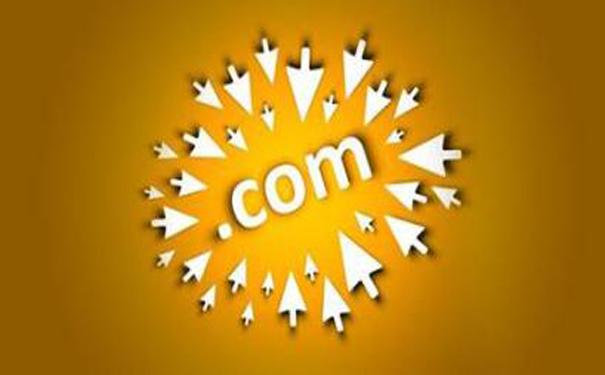 您见过.cn.com的域名吗?.jpg