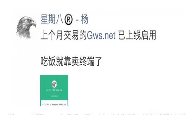 三声母域名GWS.net易主海外金融终端并启用上线!jpg